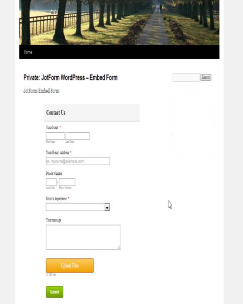 Wordpress Embed Form_6