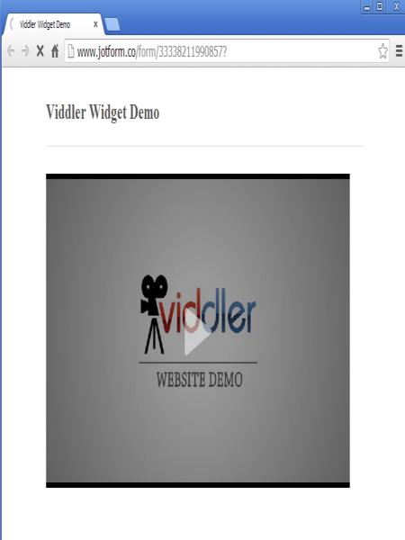 Viddler_3
